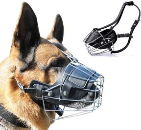 10 Best Muzzle for German Shepherd [Reviews & Buying Guide]