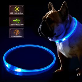 XS Size, Orange Large Dogs LED Dog Collar USB Rechargeable Glowing Pet Collar Night Safety LED Light Up with Nylon Webbing Perfect for Small Medium