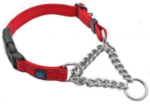 best collar for large god that pulls