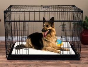 best crate for german shepherd