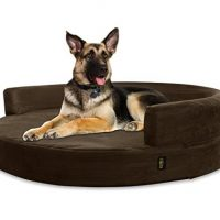 10 best dog bed for german shepherd in 2020 [ Reviews ]
