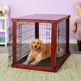 best dog crate for pitbull