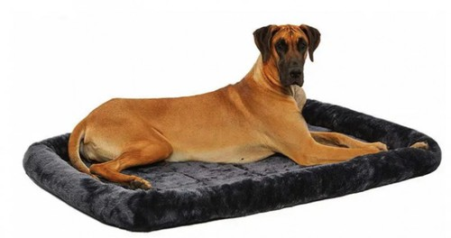 10 Best Dog Bed for Great Dane [ Reviews & Buying Tips ]
