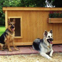 10 best dog house for german shepherd [ Unbiased Reviews ]