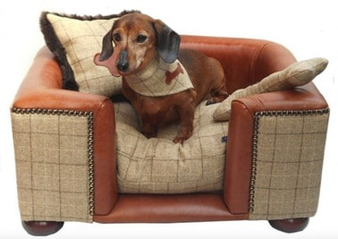 10 Best Dog Beds For Dachshunds [ Reviews & Buying Tips ]