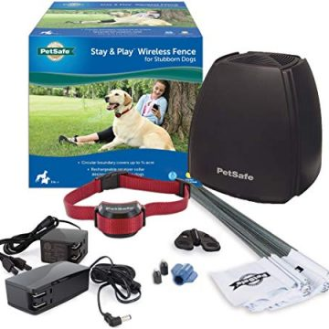 Best Wireless Dog Fence System